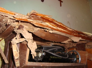 Máquina de costura atacada por cupins.