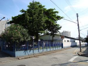Rua Marquês de São Vicente,123, Tel.: 3225-0108
