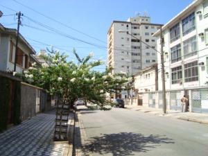 Rua Visc.de Farias, próximo a Rua D.de Caxias.