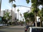 Avenida Ana Costa para quem observa em direção ao centro.